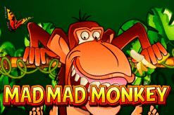 NGG Mad Mad Monkey