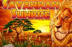 NGG Savannah Sunrise